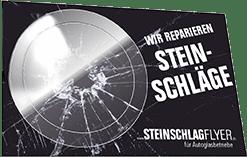 Individuelle Steinschlagflyer Mit Pflaster Im Visitenkarten Format 250 Stück