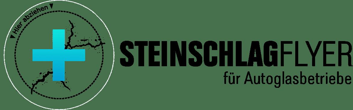 Steinschlagflyer.de
